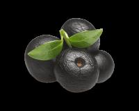 O açaí vem de um fruto indígena da Amazónia, o açaí. Neste momento é uma grande moda em todo o Brasil, devido ao facto de ser um excelente antioxidante e uma grande fonte de energia.  O açaí na tigela é preparado através da polpa de açaí congelada, batida com xarope de guaraná e banana.